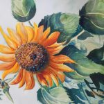 """Making Your First, Big """"SPLASH"""" with Water-color Painting (4 classes)"""